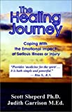 img - for The Healing Journey: A Guide for Those Dealing with Serious Illness book / textbook / text book