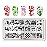 Summer Fruit Nail Art Stamping Template Tropical Punch Pattern Rectangle Image Plate Stamping Polish Needed BP-L001 (Color: BP-L001)