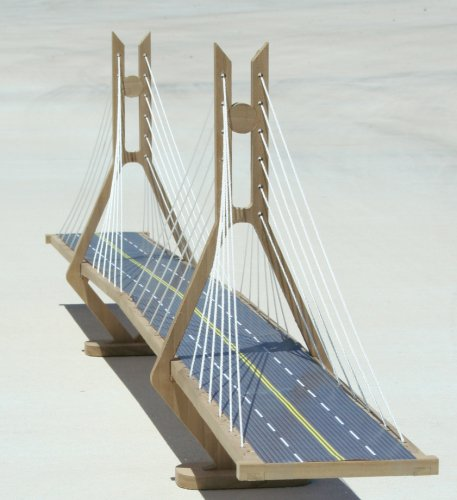 The Cable-stayed Suspension Bridge