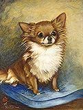 Chihuahua poil Long Marron Taille MH1036GF Pavillon de jardin