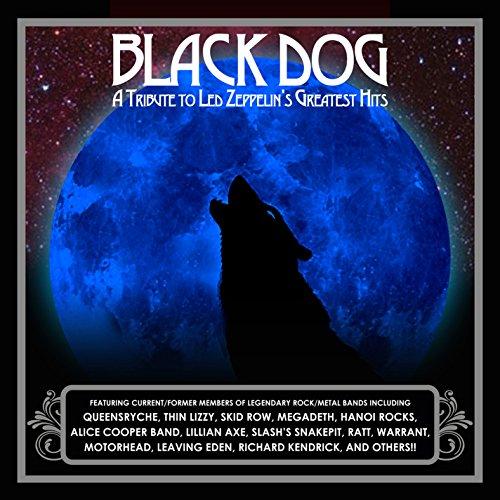 Black Dog: Tribute To Led Zeppelins
