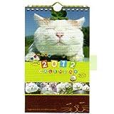 2012年 かご猫 つぶやき卓上カレンダー
