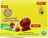 Earths Best Organic Fruit Yogurt Smoothie, Strawberry Banana, 4.2-Ounce Pouches (Pack of 12)