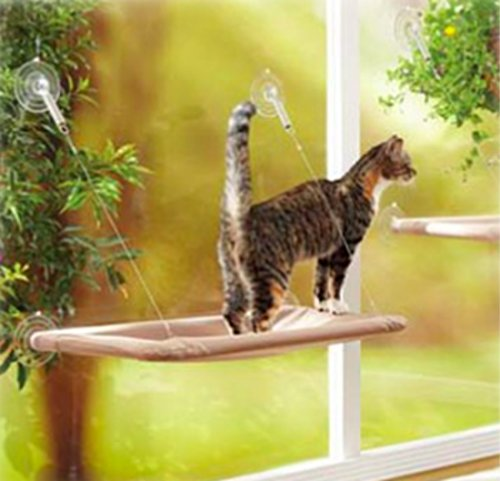 Cat EASYOWN Window Mounted Sunny Seat-up to 20 lb. Securely