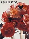 川瀬敏郎 私の花
