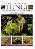 The Encyclopedia of Fungi of Britain and Europe: Indentifies 1,000 Species With Color Photographs (0715301292) by Jordan, Michael