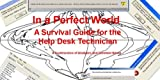In a Perfect World, A Survival Guide for the Help Desk Technician (English Edition)