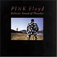 Pink Floyd - Delicate Sound of Thunder - Recital Online