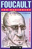 Foucault for Beginners (Writers and Readers Documentary Comic Books: 62) (086316160X) by Lydia Alix Fillingham