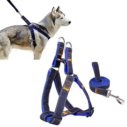 pet-harnais-ambielly-jean-chien-conduit-non-pull-leash-chien-chat-avec-quick-release-buckles-securit