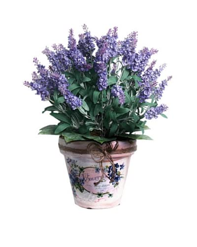 Lavender In Twine Pot