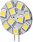 Goobay 30334 LED-Chip für G4 Lampensockel mit 10 SMD LEDs Leuchtfarbe warmweiß LED G4S warmweiß