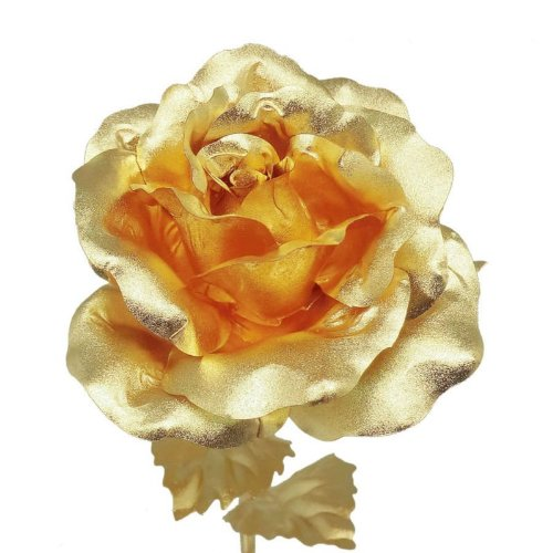 Best Gold Rose, Foil, Plated or Dipped Valentines Day ...