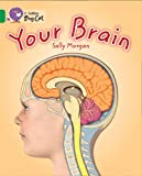 Your Brain: Emerald/Band 15 (Collins Big Cat) (0007465459) by Morgan, Sally