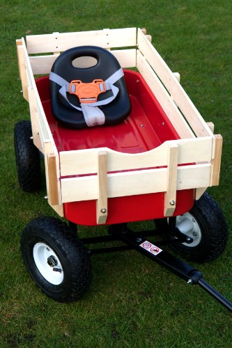 Wagon with Removable Seat and Seatbelt
