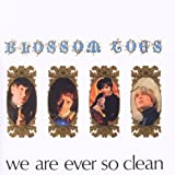 We Are Ever So Clean: Expanded Editionby Blossom Toes