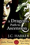 img - for A Dragon's Path to Ascension (Dragons Reborn | Uutta Toivoa) book / textbook / text book