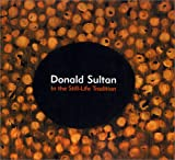 Donald Sultan: In the Still-Life Tradition (0915525062) by Madoff, Steven Henry