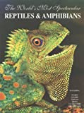 img - for The World's Most Spectacular Reptiles and Amphibians book / textbook / text book