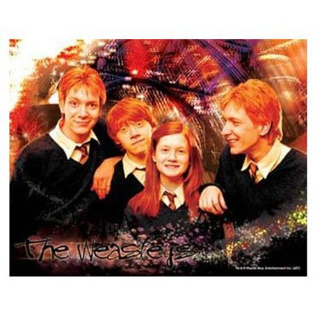 Cheap Hobbico Visual Echo 3D Effect Harry Potter The Weasleys 100pc Lenticular Puzzle (B000YBFW26)