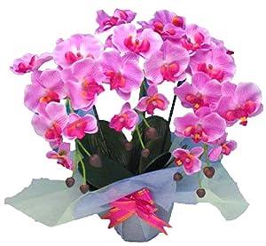 光触媒 枯れない胡蝶蘭 3本立 (造花) 赤