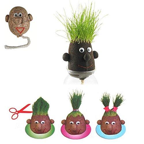Pequeña cabeza de hierba - Grasshead