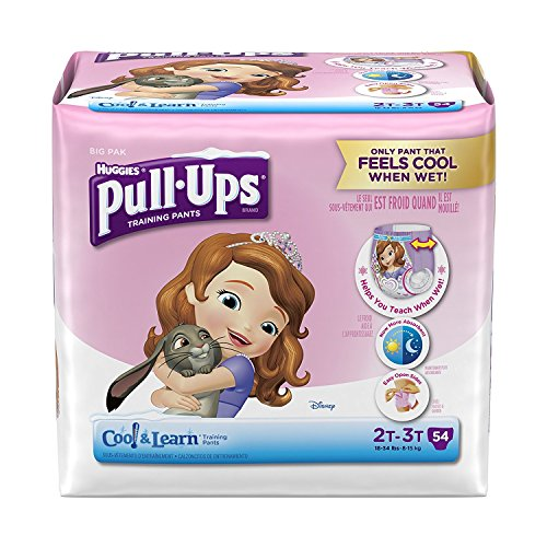 pull-ups-cool-and-learn-training-pants-for-girls-2t-3t-54-count