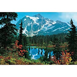 mountain morning 211 wall mural wallpaper for walls amazon forest wallpaper