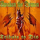 echange, troc Various Artists - Awaken the Demon: Tribute to Dio