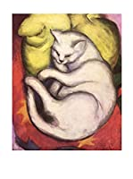 Especial Arte Lienzo Gatto bianco - Mark Franz Multicolor
