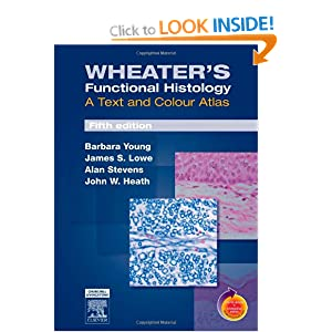 Wheater's Functional Histology: A Text and Colour Atlas