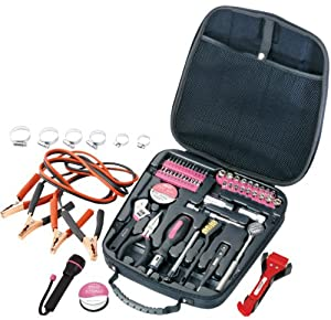 Apollo Precision Tools DT0101P Travel and Automotive Tool Kit, 64-Piece (Pink)