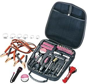 Apollo+Tools Apollo Precision Tools DT0101P Travel and Automotive Tool Kit, Pink, 64-Piece