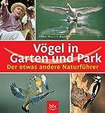 Vögel in Garten und Park