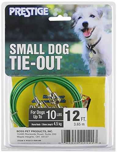 Artikelbild: Boss Pet - Prestige 12ft Small Dog Tie Out by Boss Pet