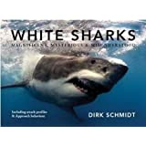 White Sharks: Magnificent, Mysterious & Misunderstood