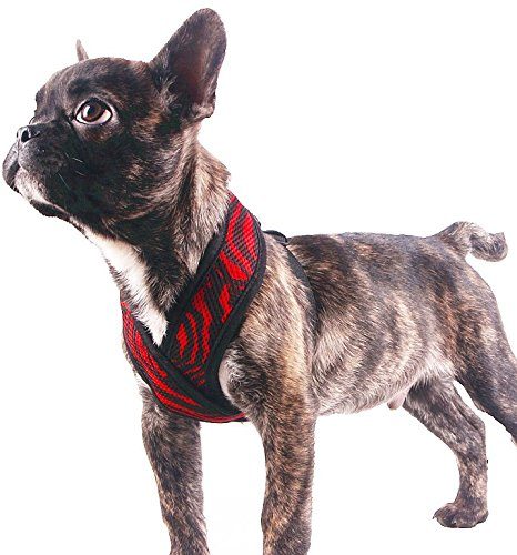 EXPAWLORER Choke Free Small Dog Vest X Frame Design with Soft Mesh, Puppy Adjustable Harness for Teacup Chihuahua Poodle Yorkshire Terrier Red Black,Medium (Pomeranian Harness compare prices)