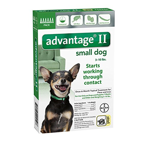 Advantage II for Dogs 10 lbs and Under - 6 pack (Advantage Ii For Dogs Small compare prices)