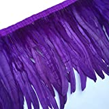 Sowder Rooster Feather Fringe Trim 12-14