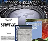 Economic Collapse: The warning signs, impact on America, 42 things you should buy before it's too late; and how to develop a survival plan.