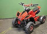 Mini Quad ATV Kinderquad 49 cc Powerquad 49ccm 2011 NEU