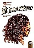 "KAZUYOSHI SAITO LIVE TOUR 2014 ""RUMBLE HORSES"