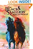 The Black Stallion Challenged