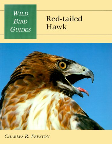Red-Tailed Hawk (Wild Bird Guides)