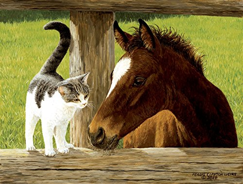 SunsOut Whiskery Hello - Horse and Cat Puzzle - 500 Piece Jigsaw Puzzle