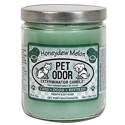Pet Odor Exterminator Jar Candles