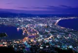 300ピース 函館の夜景 73-170
