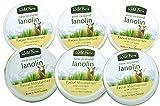 Wild Ferns Lanolin and Collagen Cream Set of Six 3.2 oz each - Free U.S. Shipping