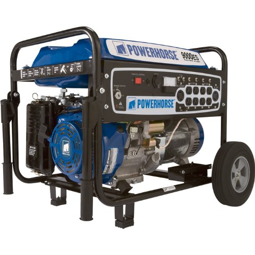 Powerhorse Portable Generator - 9000 Surge Watts, 7250 Rated Watts, Electric Start