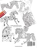 The Wonderful World of Horses - Horse Adult Coloring / Colouring Book: Beautiful Horses to Color